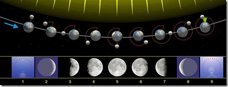 800px-Moon_phases_00