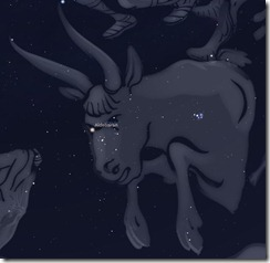 Sternbild Stier - Astronomie