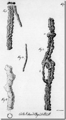 Blitzröhren nach Funden aus der Senne; Tafel 3 aus der Veröffentlichung von 1817