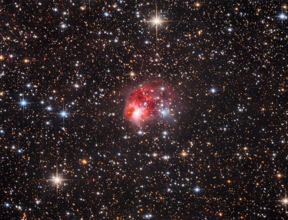 Die Fliege NGC 1931