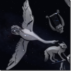 Sternbild Schwan (Cygnus)
